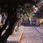 Eolie Island, Sicily:  Lipari - a scene at the Castello