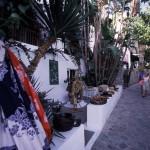 Eolie Islands, Sicily, Italy: Panarea - a spot on the island